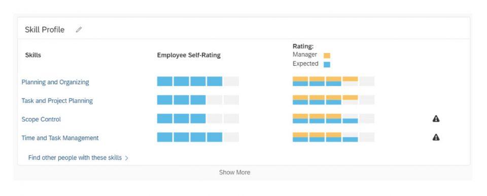 Im Skill-Profil können Fähigkeiten bewertet werden